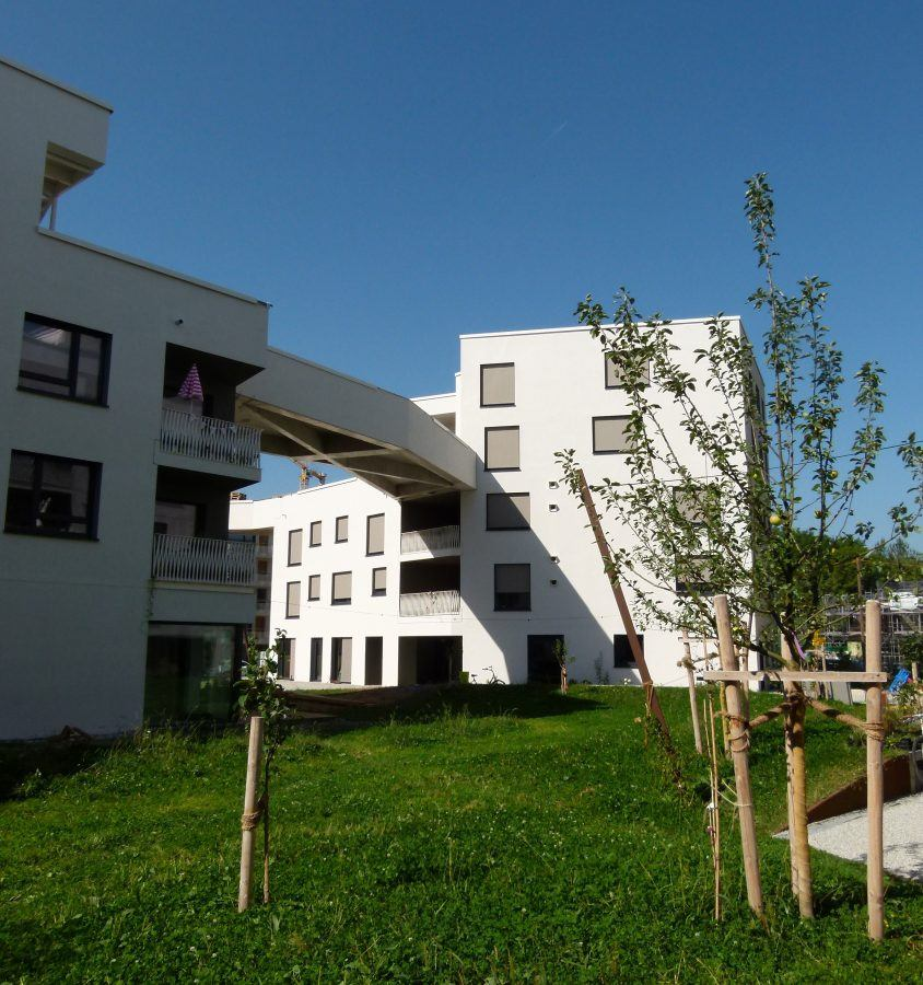 Green spaces were also included in the project, not only on the ground, but also on the roofs. Copyright: Claudia Neeser.